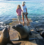 Galapagos Islands, sea lion